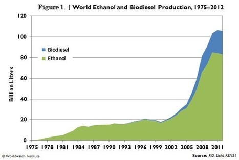 Biofuel Production Declines | Vital Signs Online | Sustain Our Earth | Scoop.it
