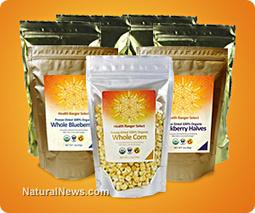 100% organic, non-GMO, non-China, Freeze-Dried fruits and ... | Procesamiento de Alimentos Orgánicos | Scoop.it