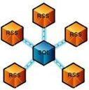 RSS Scripts Directory (FeedForAll)   RSS Circus : veille stratégique, intelligence économique, curation, publication, Web 2.0   Scoop.it