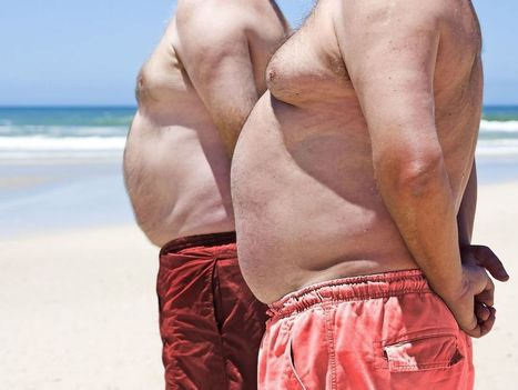 Obesity raises risk of 10 common cancers: study in The Lancet | Indoor Rowing | Scoop.it