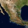 Programas para la conservación de animales en peligro de extinción en México