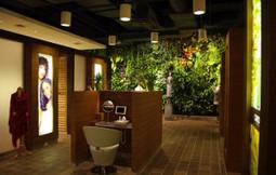 Arquitectura ecológica: jardines verticales - elinmoBlog | Jardines Verticales y azoteas verdes. | Scoop.it