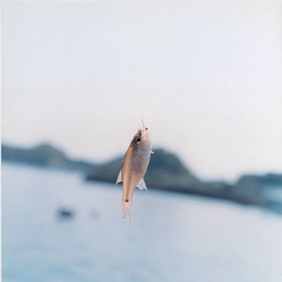 rinko kawauchi | Draft | Scoop.it