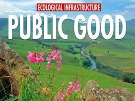 Call to integrate 'ecological infrastructure' in South Africa's National Development Plan and national growth and development policies | Nature + Economics | Scoop.it