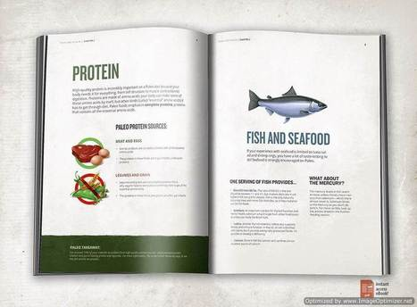 Your Guide to Paleo - Sebastein Noel Scam Review | Health | Scoop.it