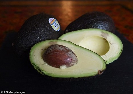 Have you been throwing out the healthiest part of the avocado? | Kickin' Kickers | Scoop.it