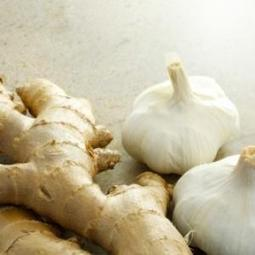 Garlic and Ginger Inhibit Drug Resistant Bacteria | Health and Wellness | Scoop.it