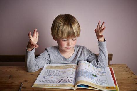 «Les professeurs des écoles sont trop mal à l'aise avec les mathématiques» | Ludo&TICE | Scoop.it