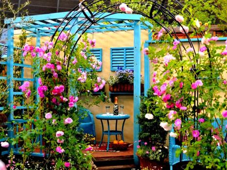 Le Jardin des Senteurs : Une palette végétale diversifiée pour un plaisir sensoriel élevé ! | Jardinage | Scoop.it