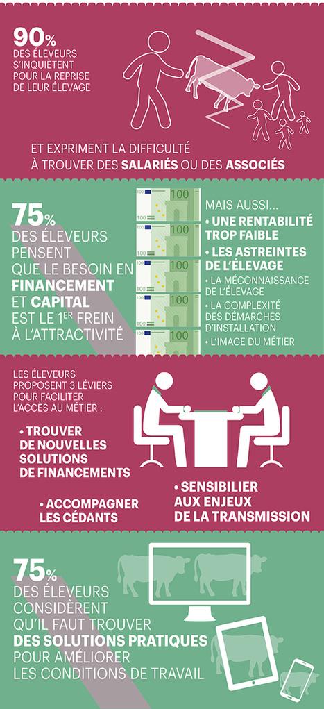 Attractivité du métier d'éleveur : Infographie - Donner l'envie du métier | Agronomie, élevage, eau et sol - Montpellier SupAgro | Scoop.it