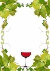 Vin naturel : vin au procédé de fabrication naturel   vin naturel   Scoop.it
