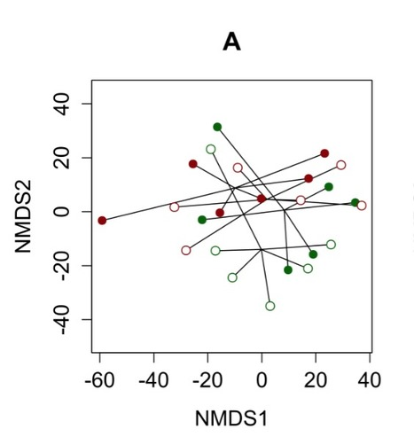 Impact of grassland management regimes on bacterial endophyte diversity differs with grass species | Genomics and metagenomics of microbes | Scoop.it