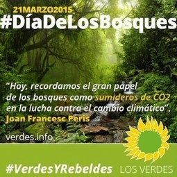 Por una nueva Ley Forestal Valenciana. No a la Ley de Montes del PP   Opinión   Scoop.it