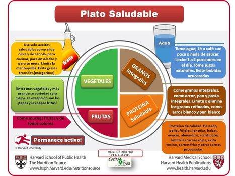 Guía de Alimentación y Salud UNED | Recursos Didacticos para E.F. | Scoop.it