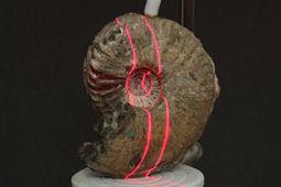 L'impression 3D arrive dans les musées - Mon logo 3D | Agence Web de création de site internet Webpulser Lille | Scoop.it