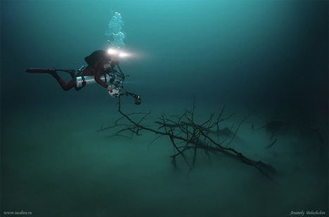 Mesmerizing Photos of Cenote Angelita, an Underwater River - PetaPixel | Cave Diving | Scoop.it
