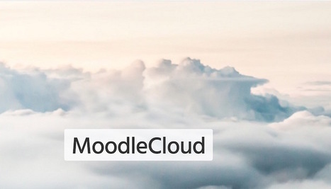 Do You Know What To Do About Bugs In Moodle Cloud? | Moodling | Scoop.it
