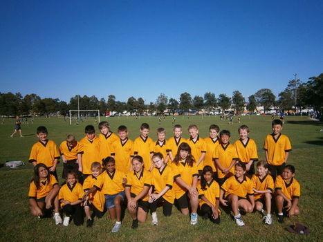 Kingswood Park Public School | Home | Creating a school website | Scoop.it