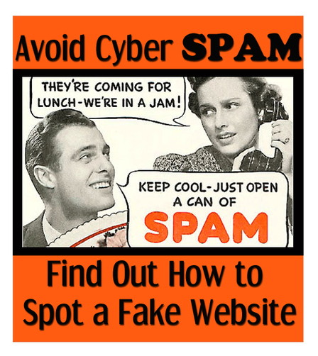 How to Spot a Fake Website - Guardian Network Solutions | Guardian Network Solutions | Scoop.it