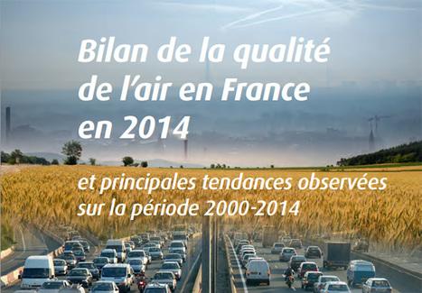 Bilan 2014 de la qualité de l'air en France - Ministère du Développement durable | Quoi de neuf sur le Web en Histoire Géographie ? | Scoop.it