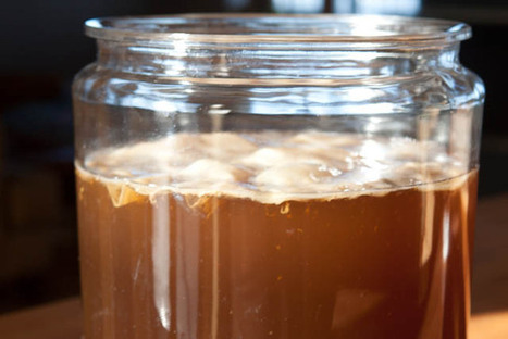 Kombucha | fermentation recipe | Reality Bytes | Scoop.it