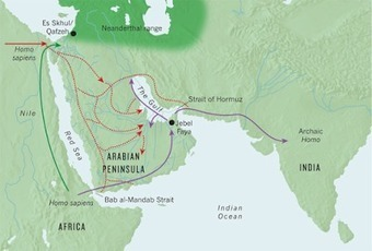The Archaeology News Network: When Arabia was green: Lush grasslands helped early man make leap out of Africa | Human Interest | Scoop.it
