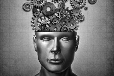 7 experiências que o seu cérebro precisa para funcionar melhor | Descobertas científicas sobre o cérebro | Scoop.it