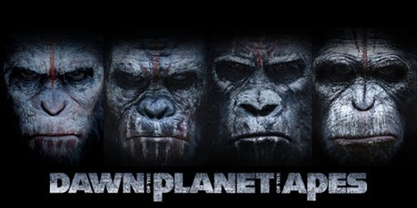 13 Leadership Lessons From Dawn Of The Planet Of The Apes | Leadership for Asset Management Excellence | Scoop.it