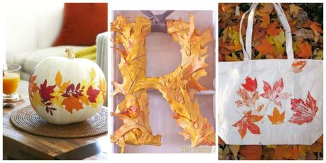 20 Gorgeous Ways to Craft with Fall Leaves | Arts & Crafts | Scoop.it