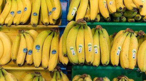 Fairer Handel: Fairer Konsum ist keine Frage des Einkommens | Agrarforschung | Scoop.it