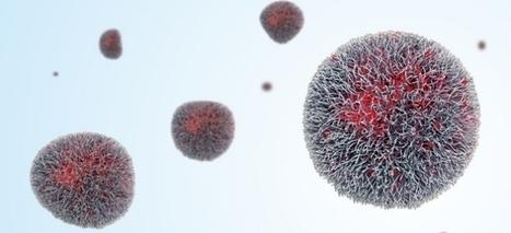 Closing The Gap For Generic Nanomedicines. CEN | Laboratorios Wachoski | Scoop.it