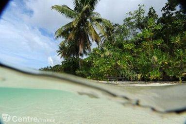 Sur une île mystérieuse en Indonésie, un Robinson internaute | Com' et territoire | Scoop.it