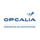 97 postes menacés chez Opcalia - Debat Formation | fpc : éducation, emploi, formation | Scoop.it