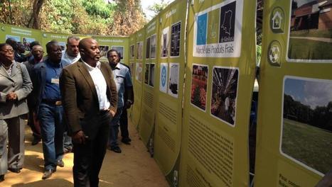 L'ambitieux plan de la RD Congo pour relancer son agriculture | Questions de développement ... | Scoop.it