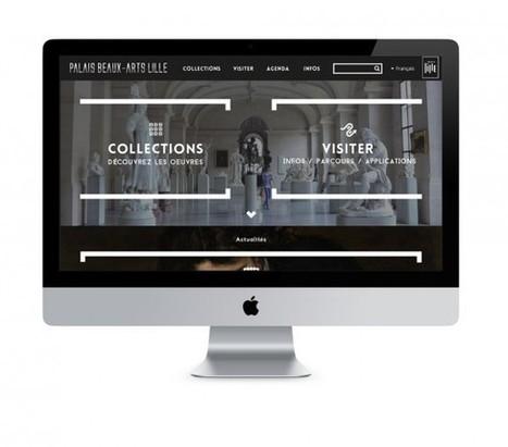 Le Palais des Beaux-arts de Lille lance son nouveau site internet | Clic France | Scoop.it