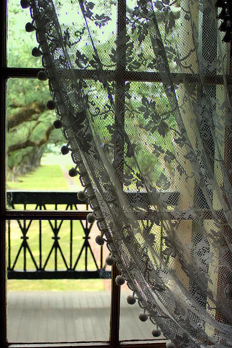 Oak Alley Window View by Anita Hiltz | Oak Alley Plantation: Things to see! | Scoop.it