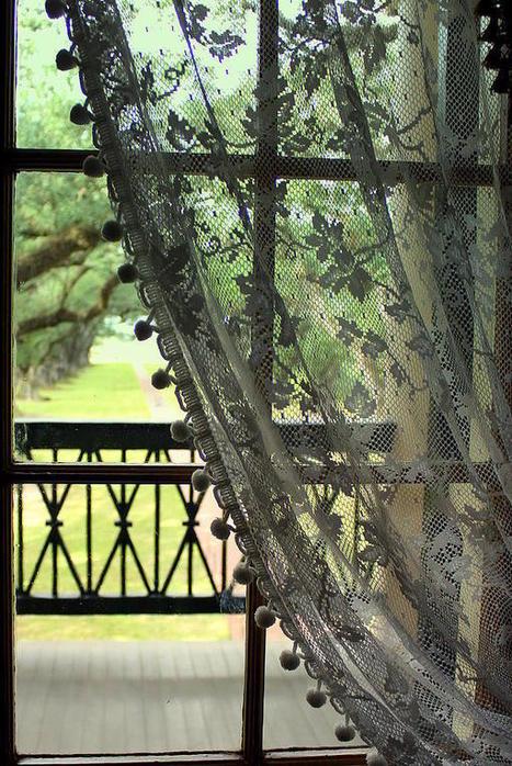 Oak Alley Window View by Anita Hiltz | Oak Alley Plantation: Things to see! | Scoop.it