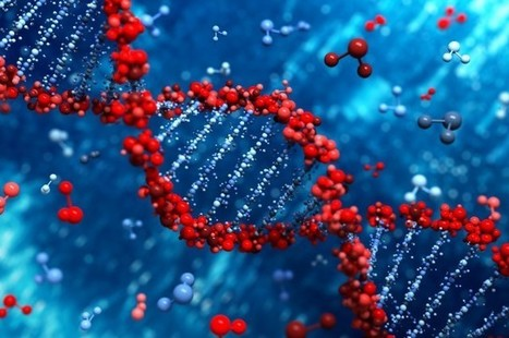 Scientists Describe New DNA Base, N6-methyladenine, Bringing Count up to 8 | Amazing Science | Scoop.it