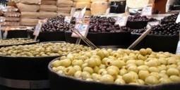 ¿Por qué unas aceitunas son verdes y otras negras? | MANUALIDADES | Scoop.it