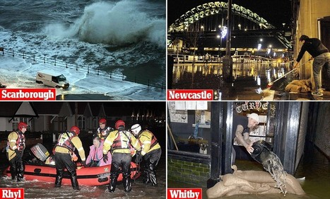 140mph winds leave 100,000 homes without power as storm sweeps in | News internationally | Scoop.it