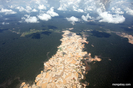Black Friday and Dirty Gold : The Last Word On Nothing | Environmental news from Peru | Scoop.it