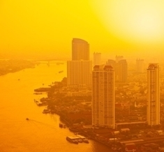How Cities Can Beat the Heat | Erba Volant - Applied Plant Science | Scoop.it