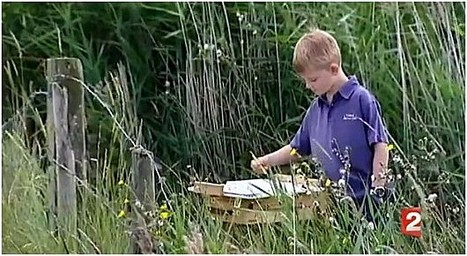 PEINTURE – Kieron Williamson, 9 ans, un «mini-Monet» bientôt millionnaire | Merveilles - Marvels | Scoop.it