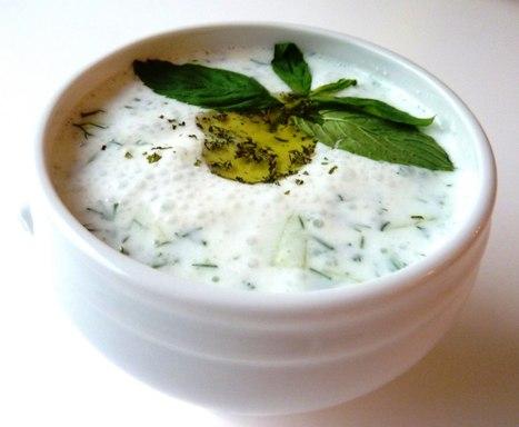 YOGURT STARTER | homemadeyogurts | Scoop.it