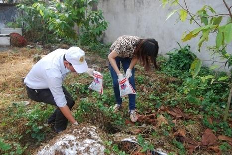 Công ty diệt chuột Hạnh Long chuyên dịch vụ diệt chuột giá rẻ tại nhà ở tphcm - Diệt Mối Hạnh Long   Dịch  vụ diệt côn trùng   Scoop.it