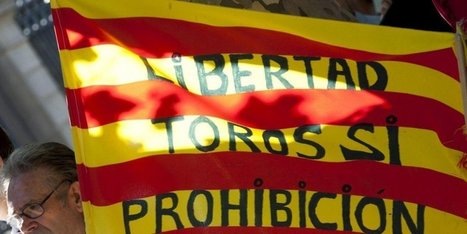 Toros : l'interdiction de la corrida en Catalogne est contraire à la constitution | BABinfo Pays Basque | Scoop.it