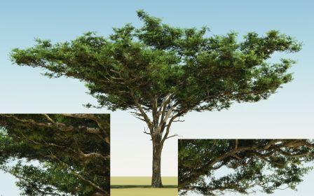 Nowości od The Plant Factory   Digital Landscape Architecture   Scoop.it