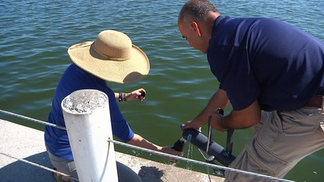 Water samples collected, confirm red tide spreading into C.C. Marina and Portland area | exTRA by the Trinity River Authority of Texas | Scoop.it