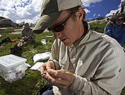 Research on Microbes Points To New Tools for Conservation | Agricultural Biodiversity | Scoop.it