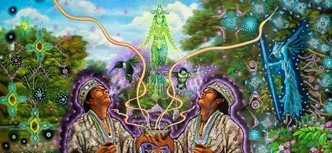 7 Legal Herbs That Can Alter Your Consciousness And Super-Charge Your Dreams | Ayahuasca  アヤワスカ | Scoop.it